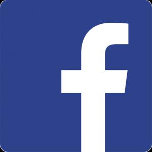 netflix facebook dk