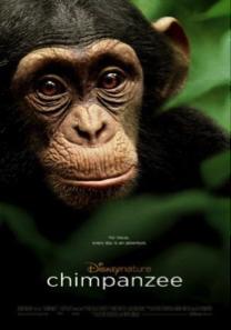 chimpanzee netflix