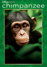 chimpanzee disney film netflix