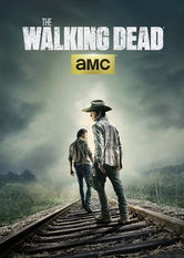 the walking dead sæson 3 netflix