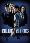 blue bloods 2 netflix dk