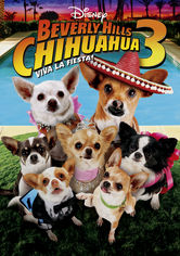 Se Beverly Hills Chihuahua 3: Viva La Fiesta! på Netflix