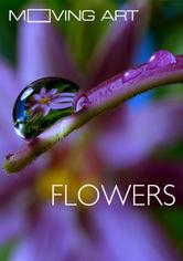 Se Moving Art: Flowers på Netflix