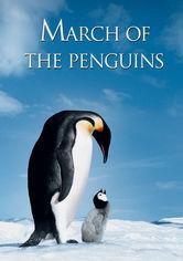 Se March of the Penguins (Pingvinmarchen) på Netflix