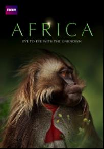 bbc africa netflix danmark