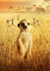 Se The Meerkats på Netflix