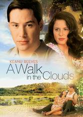 Se A Walk in the Clouds på Netflix