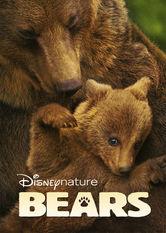 Se Bears på Netflix