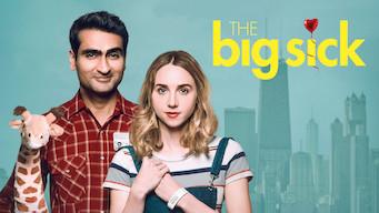 Se The Big Sick på Netflix