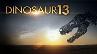 Se Dinosaur 13 på Netflix