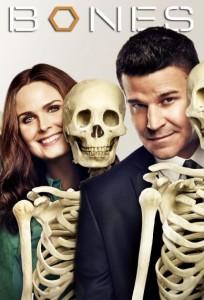 bones sæson 9 netflix
