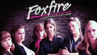 Se Foxfire: Confessions of a Girl Gang på Netflix