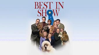 Se Best in Show på Netflix