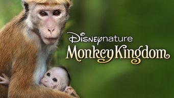 Se Monkey Kingdom på Netflix