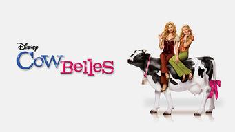 Se Cow Belles på Netflix