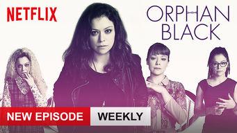 Se Orphan Black på Netflix
