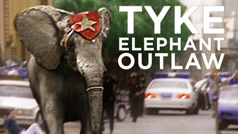 Se Tyke Elephant Outlaw på Netflix