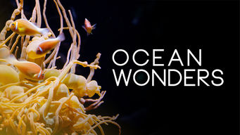 Se Ocean Wonders på Netflix