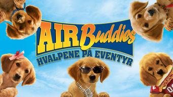 Se Air Buddies på Netflix