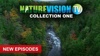 Se NatureVision TV på Netflix