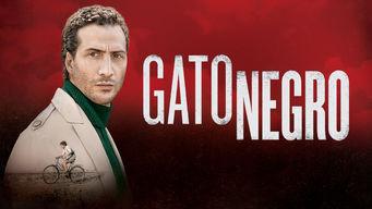 Se Gato Negro på Netflix