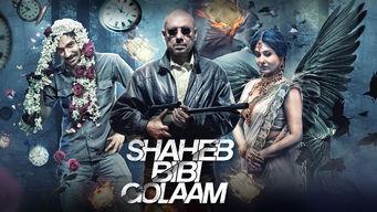 Se Saheb Bibi Golaam på Netflix