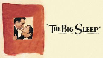 Se The Big Sleep på Netflix