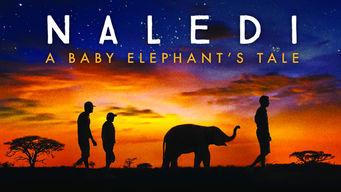 Se Naledi: A Baby Elephant's Tale på Netflix