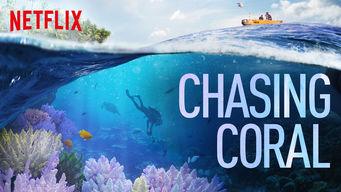 Se Chasing Coral på Netflix