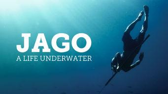 Se Jago: A Life Underwater på Netflix