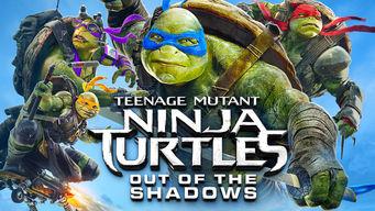Se Teenage Mutant Ninja Turtles: Out of the Shadows på Netflix