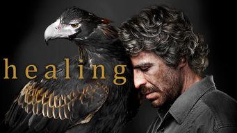 Se Healing på Netflix