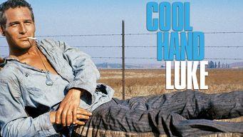 Se Cool Hand Luke på Netflix