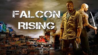 Se Falcon Rising på Netflix
