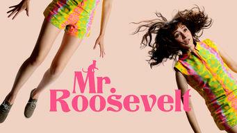 Se Mr. Roosevelt på Netflix