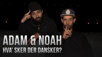 Se Adam og Noah: Hva' sker der dansker på Netflix