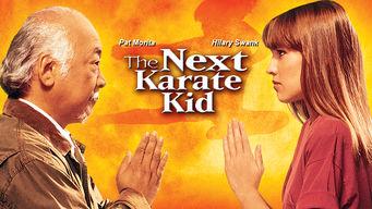 Se The Next Karate Kid på Netflix