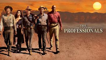 Se The Professionals på Netflix
