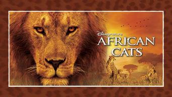 Se African Cats på Netflix