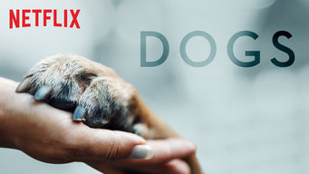 Se Dogs på Netflix