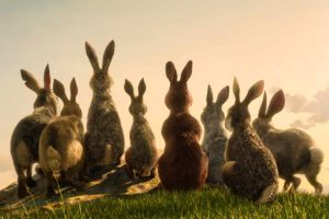 Watership Down netlfix animation