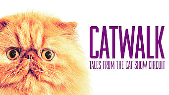 Se Catwalk: Tales from the Cat Show Circuit på Netflix