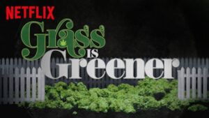 Grass is Greener netflix