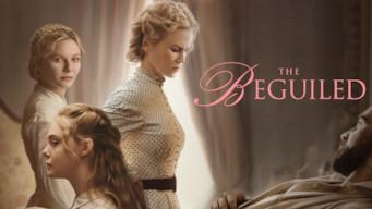 Se The Beguiled på Netflix