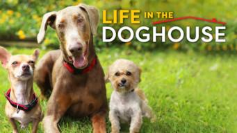 Se Life in the Doghouse på Netflix