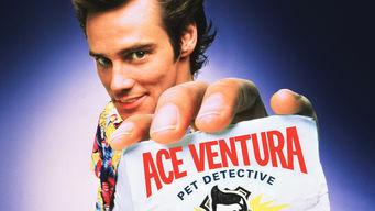Se Ace Ventura: Pet Detective på Netflix