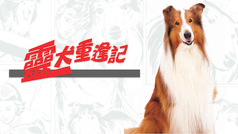 Se The Magic of Lassie på Netflix
