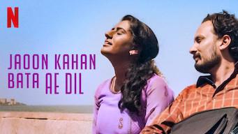 Se Jaoon Kahan Bata Ae Dil på Netflix