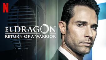 Se El Dragón: Return of a Warrior på Netflix