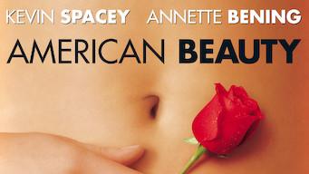 Se American Beauty på Netflix